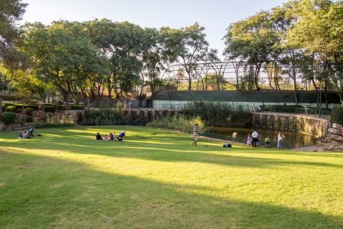 הפארקים נפתחים (חלקית), לשחק במתקנים – עדיין אסור